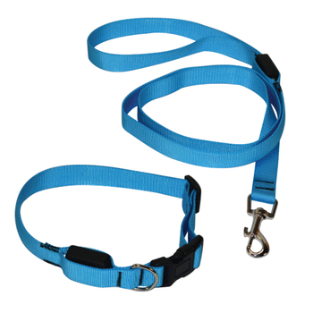 classic solid led nylon dog collar and leash set