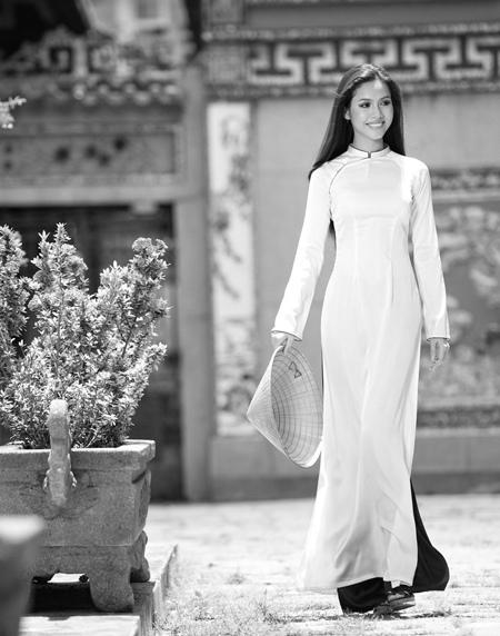 the Ao dai ( Vietnamese long dress)