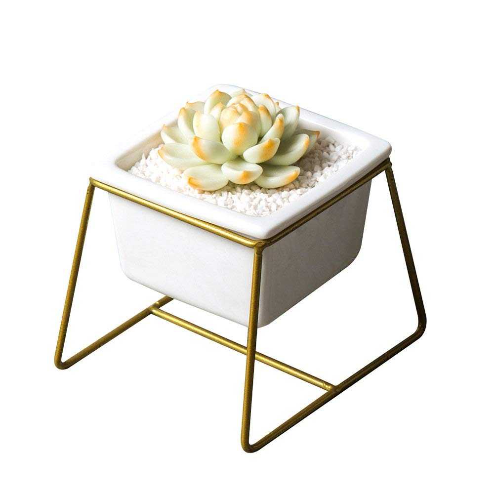 Small Shallow Planter. 3.42 Inch Mid Century Modern White Ceramic Succulent Planter Pot with Matel Stand for for Succulent Plant/Mini Cactus (White/Gold)