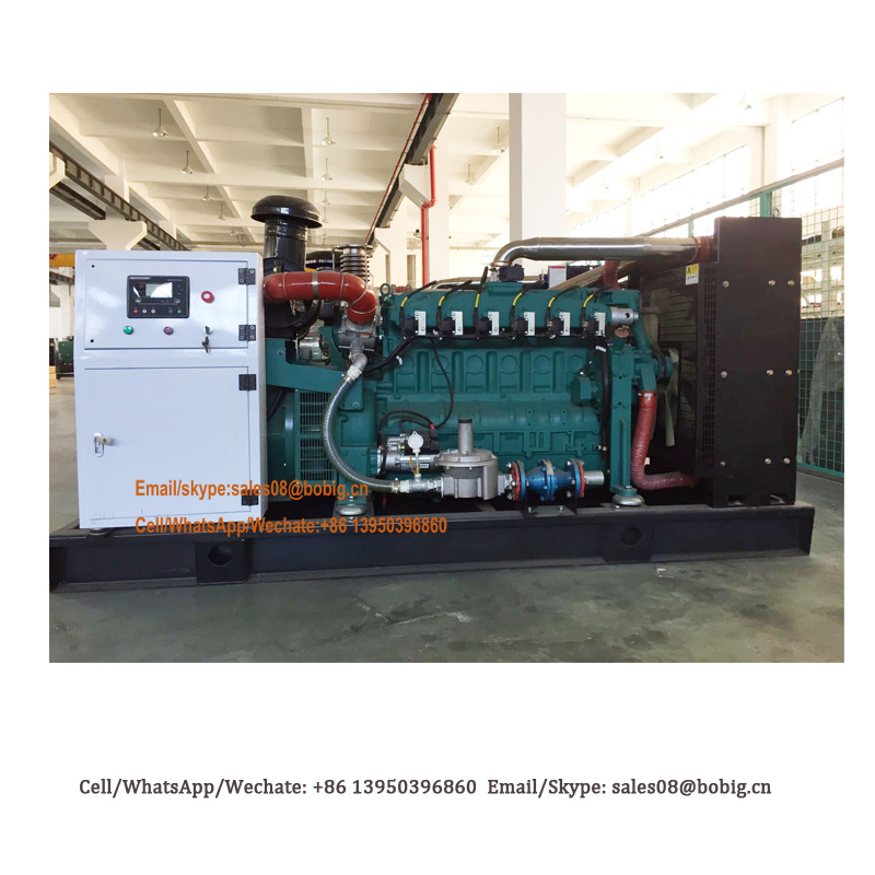 Factory supply 10kw to 1000kw gas generator price