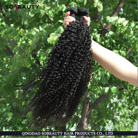 Alibaba Sign In Grade Hot Sale 8A Kinky Curly Remy Hair Weaving 99j