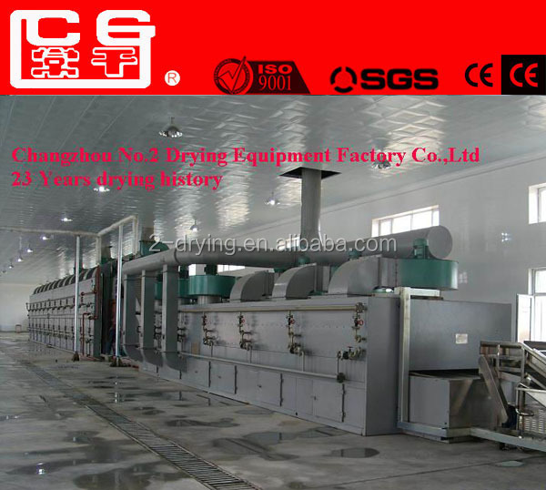 DWT Continous Industrial conveyor mesh belt dryer /kiwi slice/pulm/prune drying machine