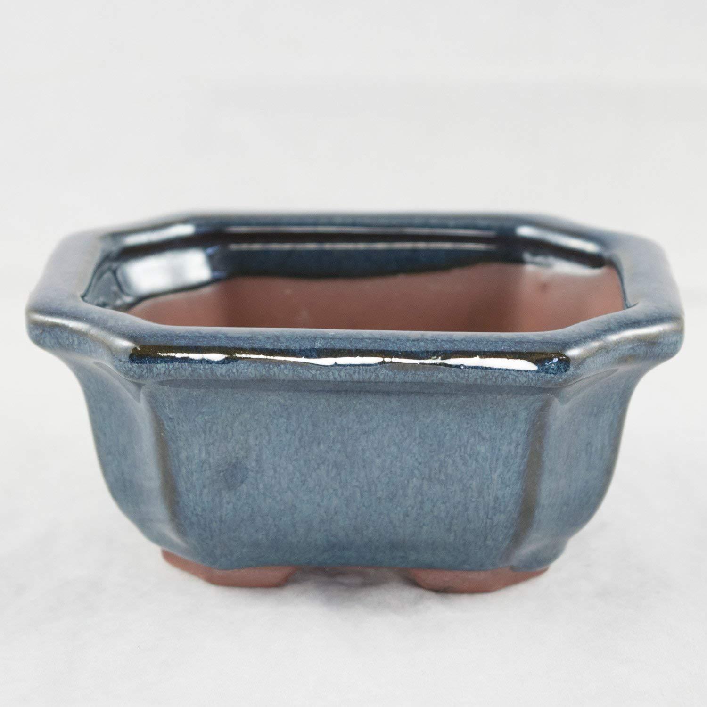 """Rectangular Dark Blue Cut-In Corners Glazed Shohin Bonsai Pot 5""""x 4.25""""x 2.25"""""""