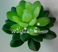Wholesale lifelive artificial succulents plant