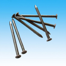 Polished common nail for construction in Guangzhou supplier