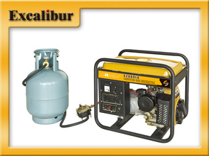 portable LPG generator with robin ey20k engine