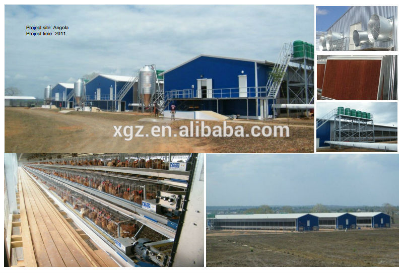 Poultry farming design for broiler layer chicken house/shed