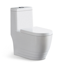 Chile Style Porcelain Washdown One Piece Toilet Parts
