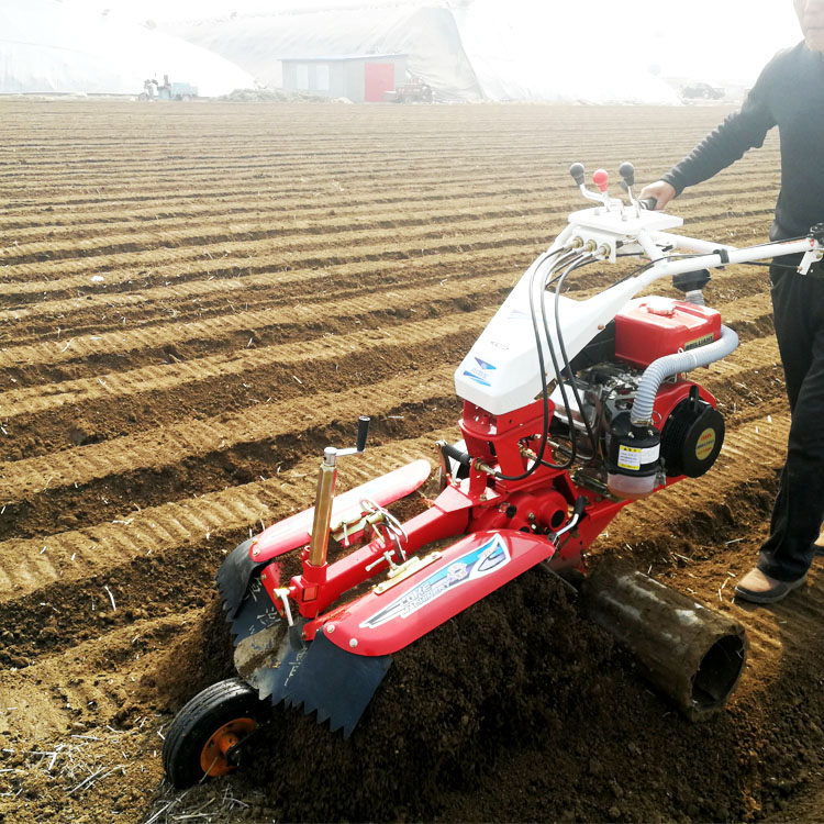 LUKE 3TG Farm Agriculture electric power diesel motor mini garden cultivator tiller rotary cultivator price for sale in india
