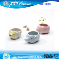 White cute Ceramic Animal pig/hedgehog Flower Pot Vase