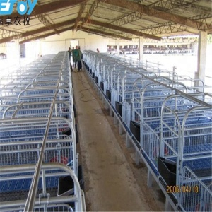 Outstanding Quality Pig Farming Equipment