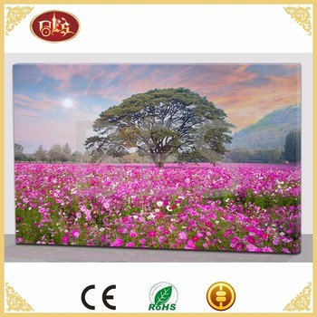 Spring Red Flower LED Canvas Price Per Meter