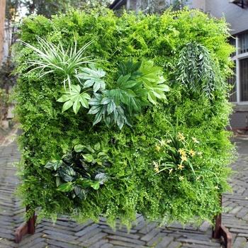 Diy Artificial Indoor Vertical Garden Green Wall With Ce Certificate Buy Green Wall Indoor Green Wall Diy Indoor Green Wall Product On Alibaba Com