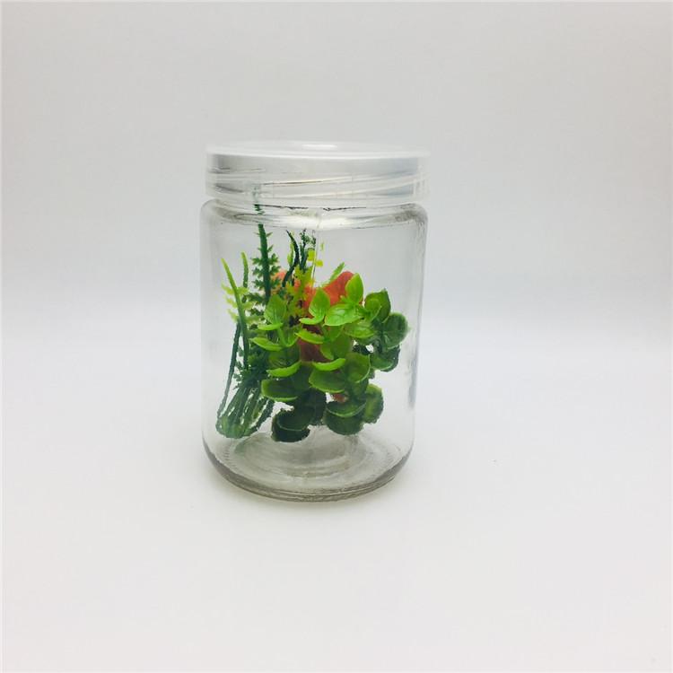 350 ml bitki doku kültürü cam şişe toptan PET plastik kapaklı