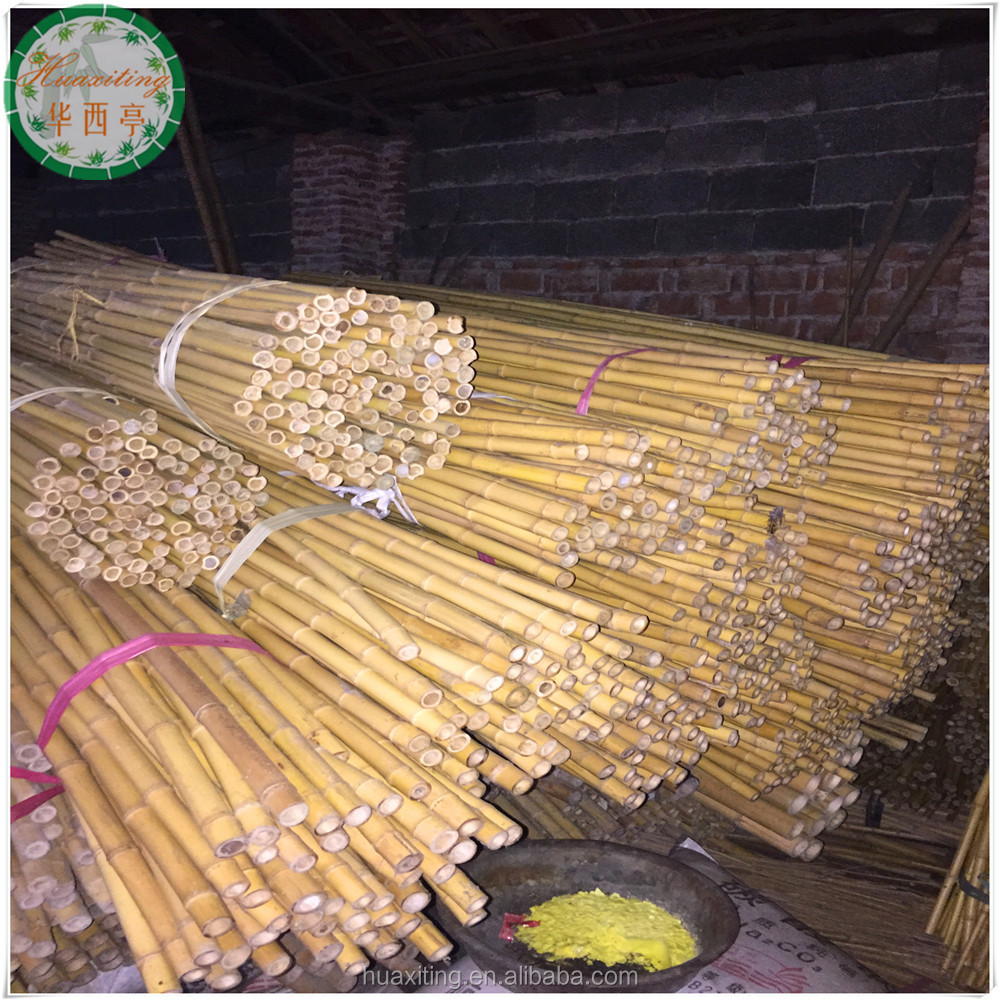 plastic cane plastic cane suppliers and manufacturers at alibaba com