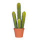 decoration cactus home mini baby cactus plant green plant artificial