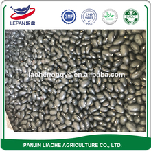 Professional Manufacture Types of Black Beans