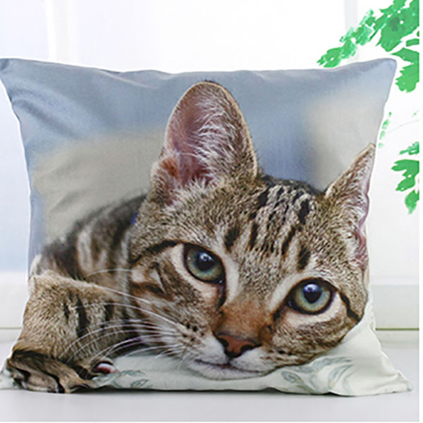 one piece anime clothing pillow cover cat character printed pillow