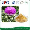 High Quality Holy Thorn Extract Milk Thistle Powder