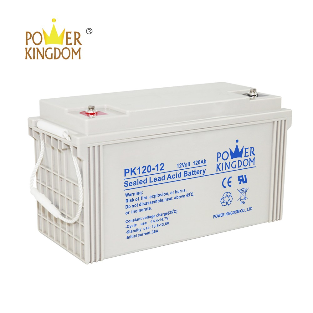 Power Kingdom deep cycle gel batteries for sale with good price Automatic door system