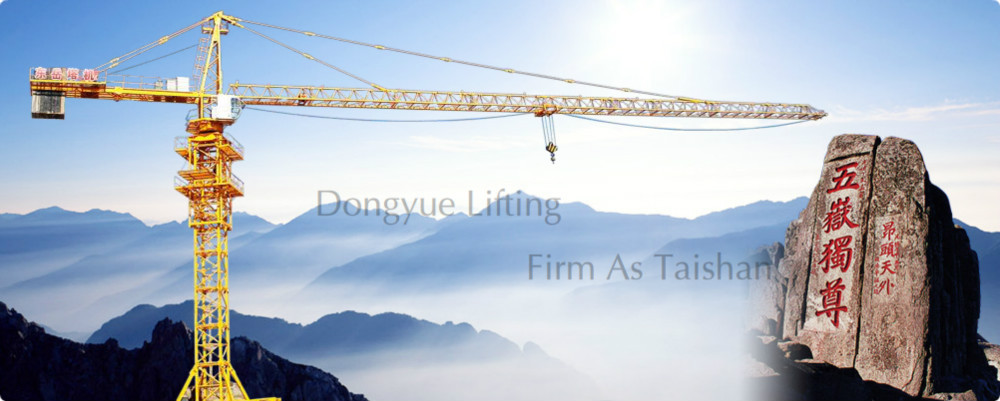 Highly Efficient Professional Self Erecting Tower Crane manufacturer