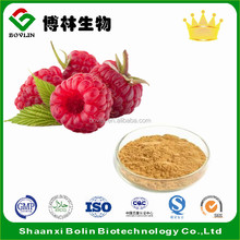 Hot Sale Red Raspberry Extract 10:1 Powder