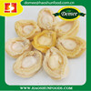 Canned Abalone in Bine in Tins Protein- Rich and Hot Sale Dried Abalone