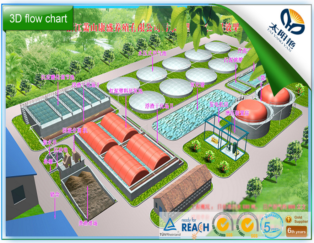 Biogas Digester Equipment