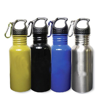 Promo Sport Stainless Steel water Bottle with Carabiner