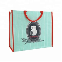 Recyclable reusable plastic shopping trolley bag promotional plastic bag manufacturer