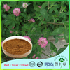 Favorable price best quality Red Clover Extract in bulk supply, free sample for initial trial
