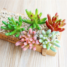 Realistico mini <span class=keywords><strong>bonsai</strong></span> piante succulente <span class=keywords><strong>cactus</strong></span> artificiale e succulente