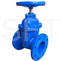 Cast Iron Pn16 Dn100 Water Din 3352 F4 Resilient Seated Gate Valve With Price