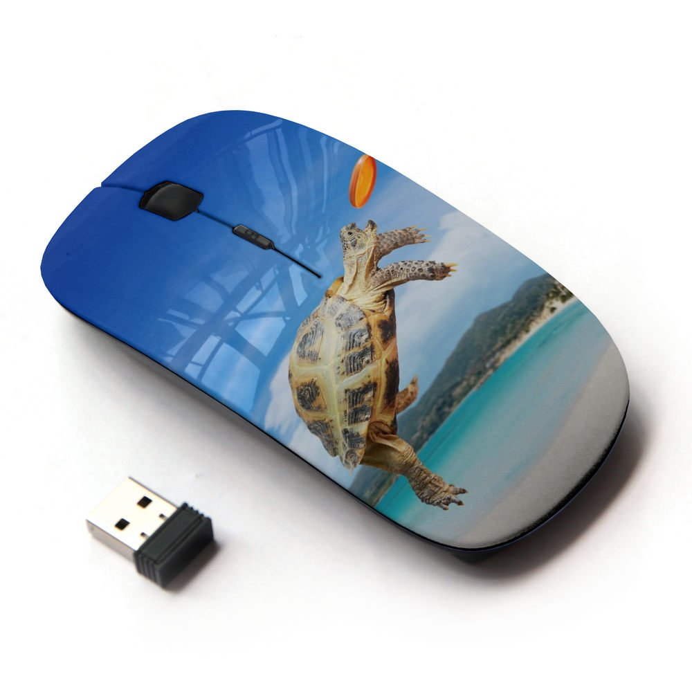 XP-Tech [ Slim Optical 2.4G Wireless Mouse Mice With Nano Receiver for PC Desktop Computer Laptop ] - Turtle Frisbee Beach