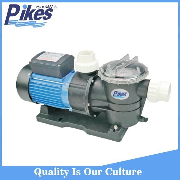 Hot Sale Popular Model Dc Motor Swimming Pool Pump Buy