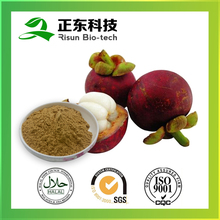 Spary Dried Bulk Store Mangosteen Extract with 10:1