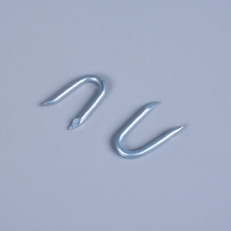 Shanfeng 40 Pieces Zinc Plated U Fence Shaped Nails - Buy