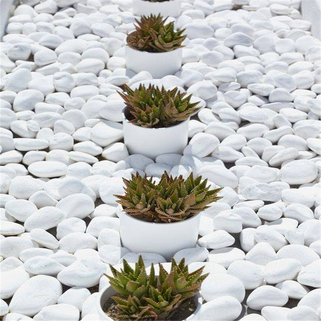 Stone chips garden source quality stone chips garden from global white pebble stone for garden yellow color small size stone chips pebbles for garden decoration workwithnaturefo