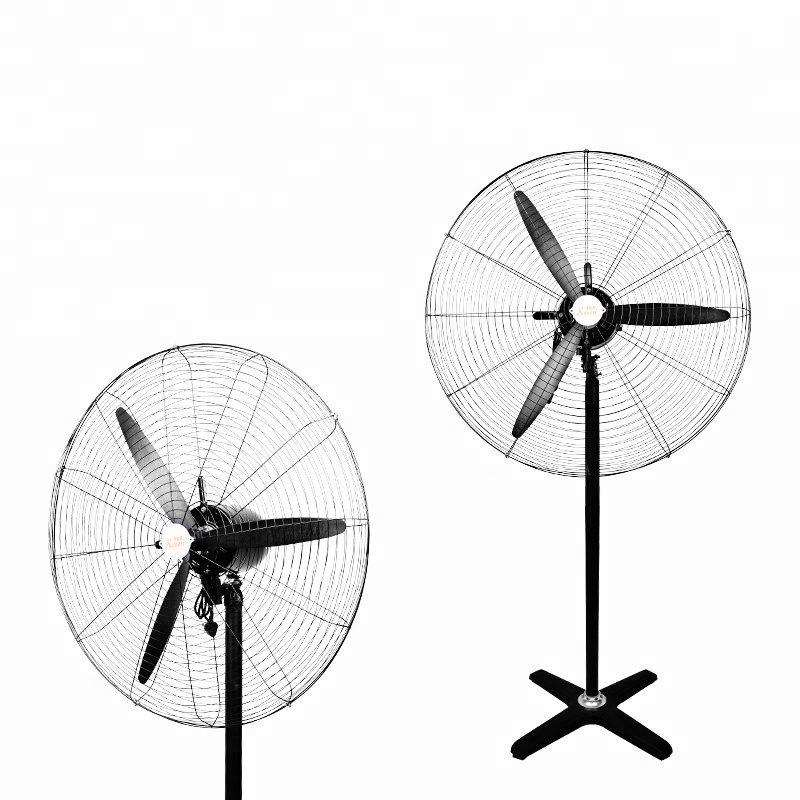 Pp Carton Fan Wholesale Fan Suppliers