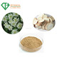High Purity Organic Herbal Angelica Extract Powder with Best Price