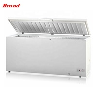 560L Commercial DC 12V 24V Solar Powered Chest Freezer