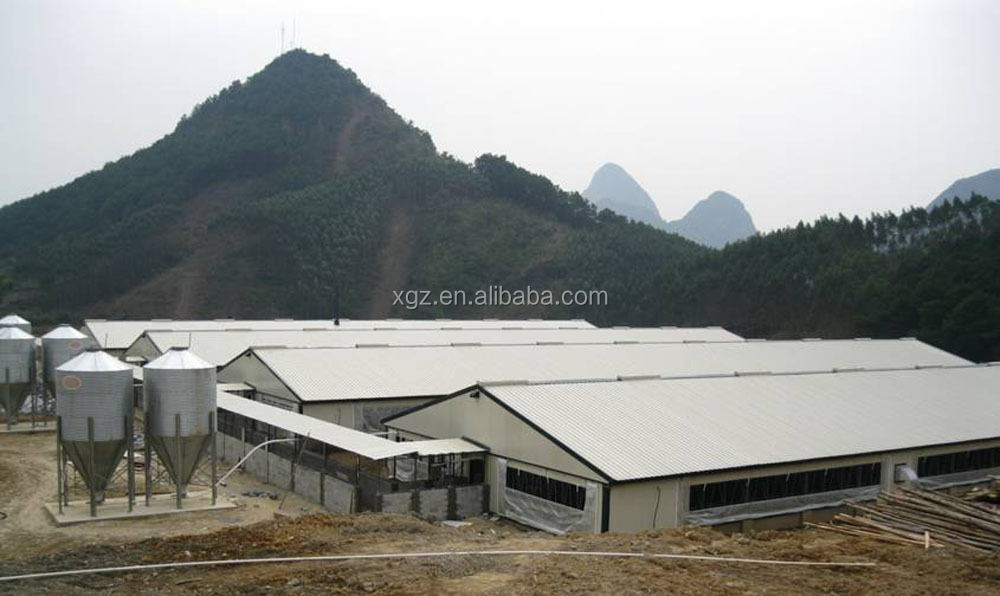 Q235 Steel Material Algeria chicken farms hot sale batteries for laying hens