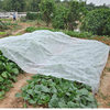 Agriculture Nonwoven Fabric Wholesale/pp non woven fabric for agriculture application/UV resistant PP nonwoven