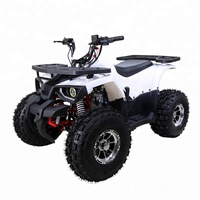 4 wheeler 4 Stroke Air Cooled Mini Quad 4x2 ATV 110CC
