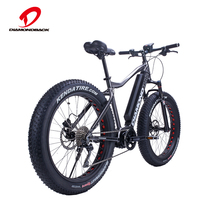 High quality lithium battery fat tire electric bike