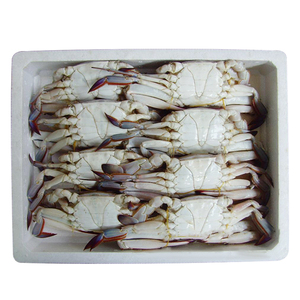 Frozen whole swimming hairy crab export