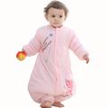 Autumn Winter Baby Sleeping Bag Cartoon Bear Thicken Warm Girl Boy Kids Removable Sleeves Straddle Sleep