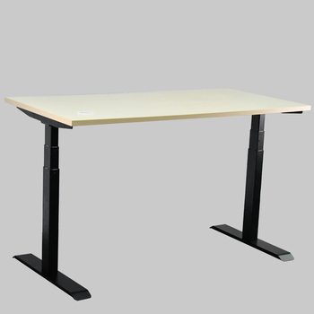 Modern Stand Up Desk Electric Height Adjustable Sit Stand Desk