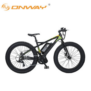 8fun electric machinery 500W big power motorized bicycles