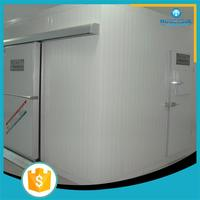 new brand commercial cold storage container deep freezer cold room